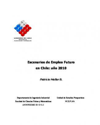 Escenarios De Empleo Futuro En Chile: Año 2010