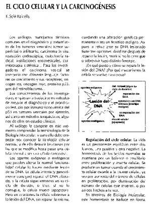 El Ciclo Celular Y La Carcinocenesis