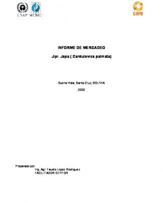 Informe De Mercadeo Jipi Japa ( Cardulovica Palmata)