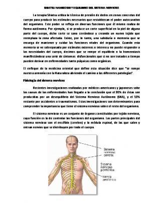 Shiatsu Namikoshi Y Equilibrio Del Sistema Nervioso