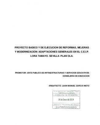 Adaptaciones Generales En El Ceip Lora Tamayo. Sevilla
