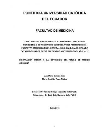 View/open - Pontificia Universidad Católica Del Ecuador