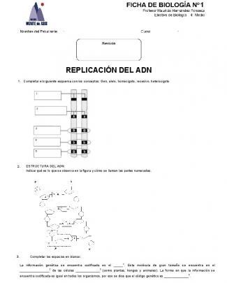 4°e – C1 Repaso Dogma - Colegio Monte De Asís