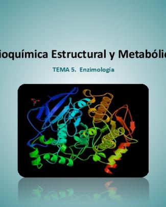 Tema 5. Enzimologia