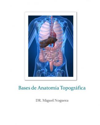 Bases De Anatomía Topográfica