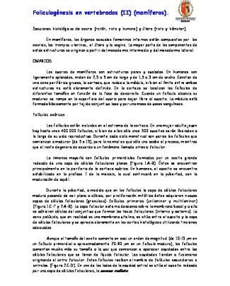 Foliculogénesis En Vertebrados (ii) (mamíferos).