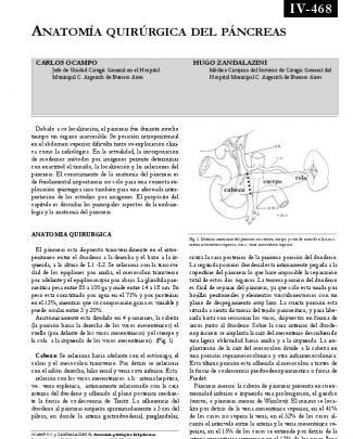 Anatomía Quirúrgica Del Páncreas.